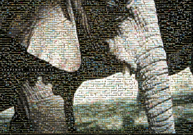 snapshot_serengeti_elephant_poster_small