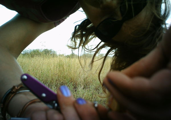 Ali performing some vital maintenance on one of the 225 camera traps