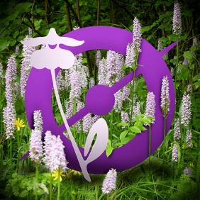 avatar_orchids