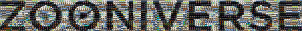 zoo-mosaic