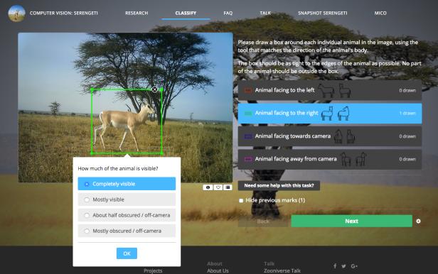 Screenshot of Snapshot Serengeti: Computer Vision Project