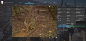 pasted-image-at-2016_10_26-05_36-pm