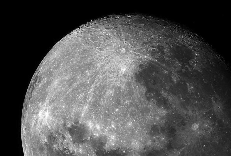 moon-zoo